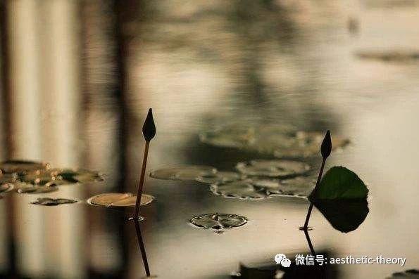 WeChat 圖片_20180516205533c