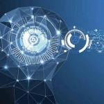 认知模块:大脑审美活动的核心结构